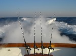 V_Local Charter Fishing